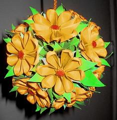 Rudbeckia (flowers of Yoshihide Momotani)