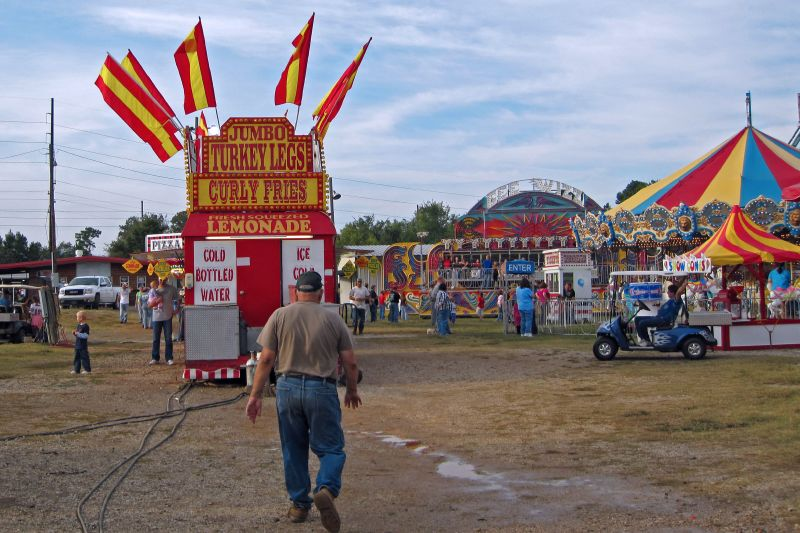 Polk County Fair 27