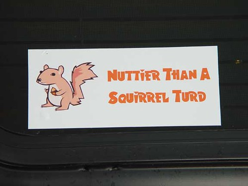 Nuttier than a Squirrel Turd Bumper Sticker