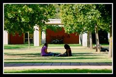 oui mais pas aujourd'hui visiblement /// §§7123 (david.tharsis) Tags: université september septembre mention mirail