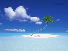 nature9 (Krishari) Tags: lovenature peacefulnature