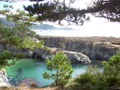 China Cove from above (mademcod) Tags: ocean clouds coast seascapes pacific bigsur pointlobos centralcaliforniacoast