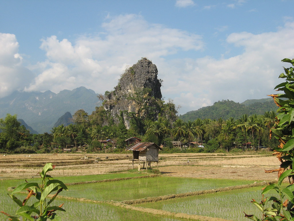 Karst and rice fields, Vang Vieng countryside