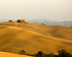 Crete Senese (CHEEZMAN) Tags: travel italy golden farmland hour tuscany crete montalcino senese