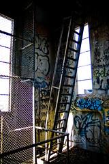 Near the top of the silos (Kitten of DOOM.) Tags: collingwood melbourne urbanexploration silos abandonedbuildings urbex derelictbuildings yorkshirebrewery
