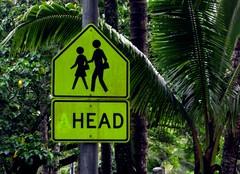 Head.. (Sea Moon) Tags: school students warning hawaii crossing roadsign missingletter