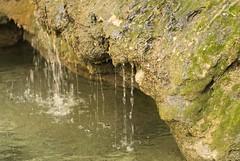 Es Barranc - Cami Vell