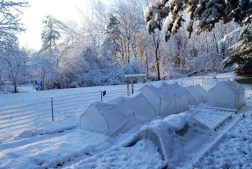 first snow 3