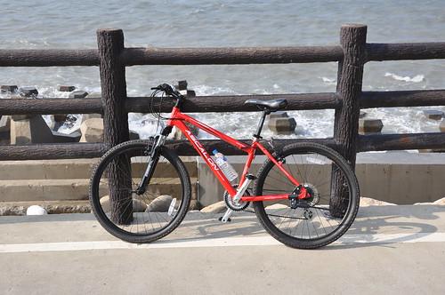 Cykeln jag hyrde