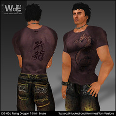 WoE DG-02d Rising Dragon T-Shirt - Bruise