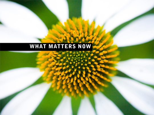 cover What matters now