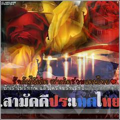 tthai