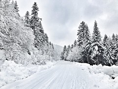 Bjelašnica (7a91d07a20414c8d04888dcc30559d78) Tags: planina snijeg januar 2017 iphone7plus bosna sarajevo bjelašnica