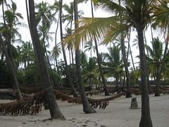 Pu'uhonua o Honaunau (Place of Refuge)