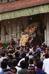 the arrival (vbsuresh) Tags: people music india art festival out temple gold god percussion traditional crowd entrance culture police kerala sound gathering elephants annual arrival tradition coming umbrellas shining cultural decorated thrissurpooram 40d