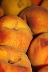 Peaches (netman007 (Andre` Cutajar)) Tags: blackandwhite orange dog brown cute nice expressions malta andre peaches cutajar netman007