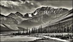Jasper National Park, Alberta (Artvet) Tags: bw canada jasper alberta blackwhitephotos bwhdr