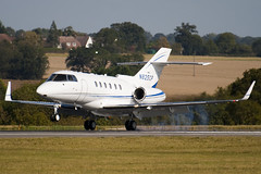 N825CP - 258329 - Private - Raytheon Hawker 800XP2 - Luton - 091008 - Steven Gray - IMG_0134