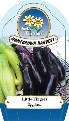 Plant label aubergines