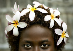 Bougainville girl and frangipan headress - Papua New Guinea (Eric Lafforgue) Tags: pictures flowers portrait people haircut flower fleur face photo picture culture tribal human papou tribes png tradition tribe papuanewguinea ethnic tribo gens visage headdress headwear papu ethnology headgear tribu  ethnologie flowersinhair coiffe papuaneuguinea lafforgue papuanuovaguinea  ethnie ericlafforgue papouasienouvelleguine papuaniugini papoeanieuwguinea papusianovaguin papuanyaguinea   seenonflickr papanuevaguinea    paapuauusguinea  papuanovaguin papuanovguinea  papuanowagwinea papuanugini papuanyguinea  humainpersonne png6972