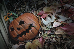 Halloween's dead (Leazwen) Tags: old orange flower leave halloween face photoshop pumpkin dead alt compost blume tot bltter krbis sonnenblume kaputt mildew schimmel kompost nikond60