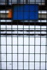 Fenced (maaniemi) Tags: canon x eos mkii mark ii markii mk2 mark2 2 5d ef 24105mm 24105 mm 4l is usm maaniemi jyväskylä wet märkä valot light shutter winter talvi catchycolors blue