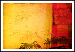 Sunset coloured abstract - 309/365 (Paul J White) Tags: light sunset red urban orange abstract hot art yellow night photoshop newcastle photography nikon warm tunisia spirit flash palm textures morocco layers 365 toon tyneside processed ladders algiers d300 50mmprime project365 strobist flickrunitedaward