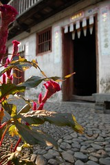 ... Hakka village (Rosanna Leung...away for 2 weeks) Tags: china lighting door house flower home village ground hakka     hakkavillage    nansiung