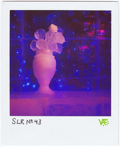 SLR No.43