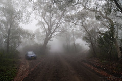 The Foggy Road to Anvil Rock Lookout (BouncedPhoton) Tags: panorama car fog blackheath australia bluemountains nsw newsouthwales lowclouds gravelroad d90 foggyroad lowvisibility treesinfog nikon18200mmvr bumpyroad nikond90 washboardroad eucalyptforest hathillroad pulpitrocklookout 4imagepanorama anvilrocklookout australianeucalyptforest