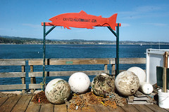 Buoys (AmyKClark!) Tags: fish signs text balls wharf round nautical buoys capitola buoyant herowinner