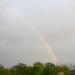 rainbows_and_rain_20110506_16180