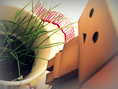Equilibrium (Lu Bodaczny ) Tags: cardboard yotsubato danbo revoltech danboard lubodaczny