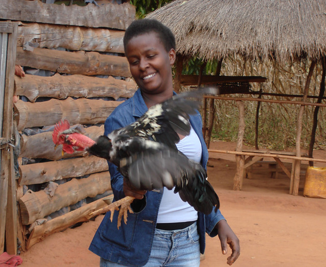 Malaika & cockerel