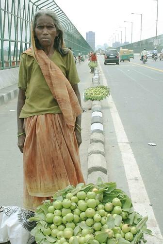 Highway Guavas