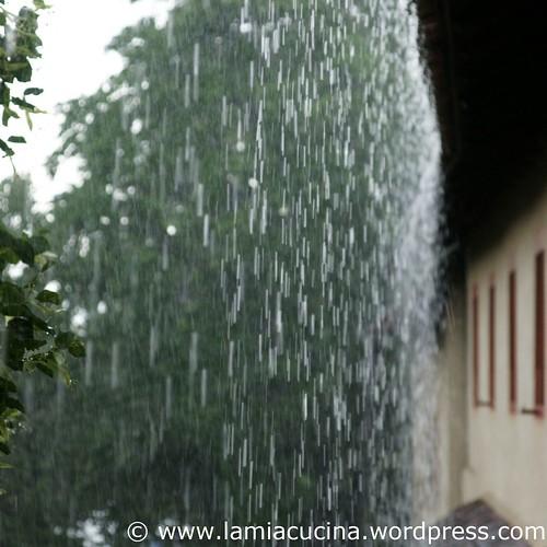 Regen 0_2009 07 15_1475