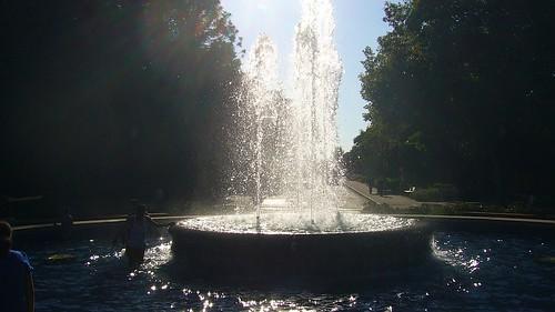 Stanford6