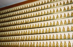 Thousand Buddha Temple
