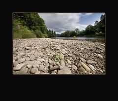 Low Down Perspective - River Tay - Dunkeld - Scotland (Magdalen Green Photography) Tags: summer river scotland cool rivertay perthshire scottish riverbed dunkeld dsc8535 iaingordon lowdownperspective