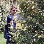 Urlaub in Valencia (Spanien) - 01.08.2009 thumbnail
