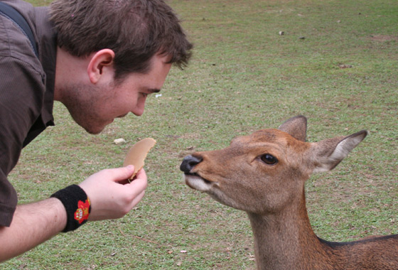 Feeding the Deer- they aren't as obedient as Pickles
