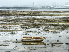 Lonely at low tide