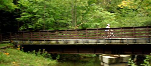 Ashuwillticook Rail Trail Bridge