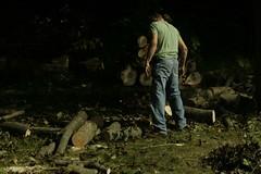 _MG_6507.JPG (zimbablade) Tags: trees sleepyhollow dougmiller videopoem