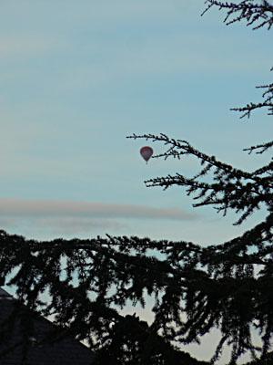 mongolfière dans le petit matin.jpg