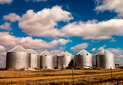Six silos in the sun (CarmenSisson) Tags: clouds rural landscape landscapes countryside nikon farm south country farming alabama grain scenic sunny cumulus americana farms silos crops agriculture six d1h pickenscounty