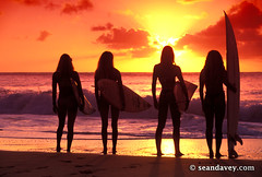silhouetted north shore surfer girls (Sean Davey Photography) Tags: usa color silhouette horizontal hawaii mr northshore surfers surfergirls sunsetsurf surffun beachscenery surffriends happysurf modelreleased northshoreoahu seandavey beachphotograph surflifestyle surfpeople lanedavey surfnorthshore surfersphotographs imagessurf surfimage gypsyruss sunsetsurfgirls jennamurad