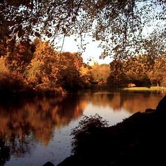 """The Glory of Autumn"""
