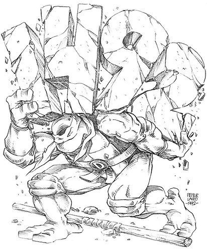 "Blast from the Past #242:  ""Teenage Mutant Ninja Turtles Adventures""  #40 cover pencils by Laird  (( 1992 )) [[ Courtesy of PL ]]"