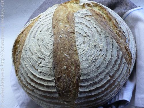 Anfängerbrot - Brot aus Grundteig 003